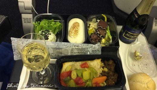 KLMオランダ航空の機内食【通常食&アラカルト・ミール&特別食】まとめ