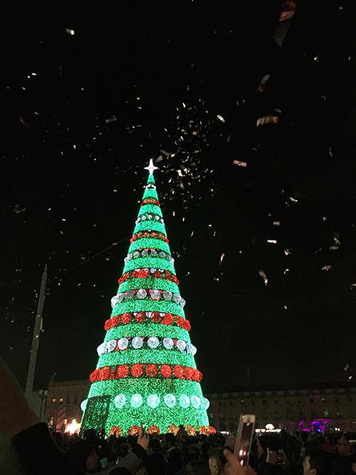 コメルシオ広場のツリーのライトアップ