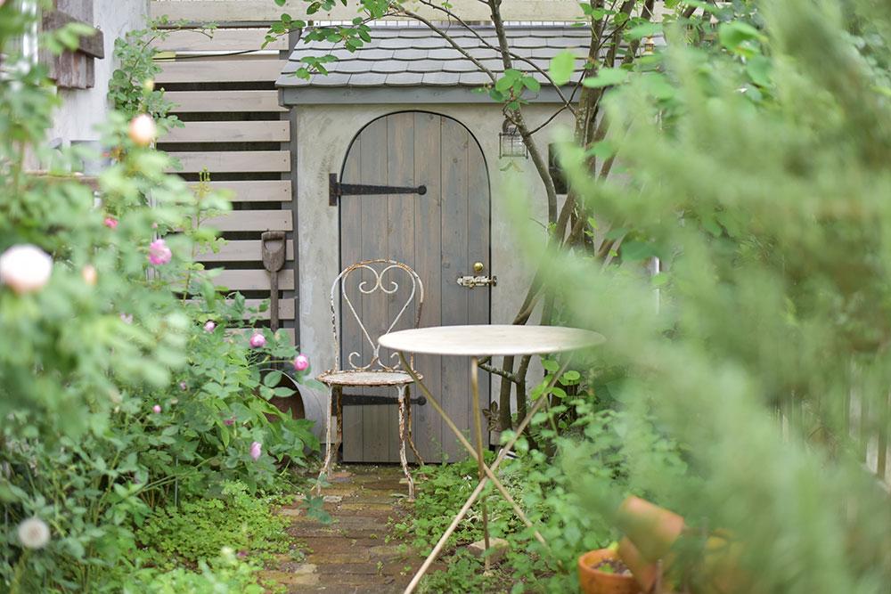 小さな庭でも楽しめる!初心者でも育てやすいバラ、イングリッシュローズとフレンチローズ