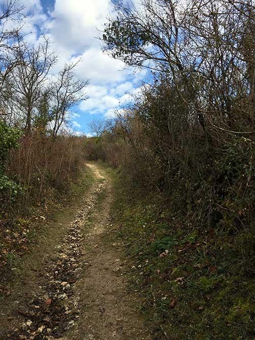 コルド・シュル・シエルの全景を見渡す丘を目指す