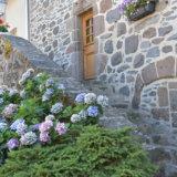 フランスの美しい村サレール