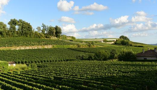 ワイン好きにおすすめの街!フランス南西部サンテミリオンへの行き方