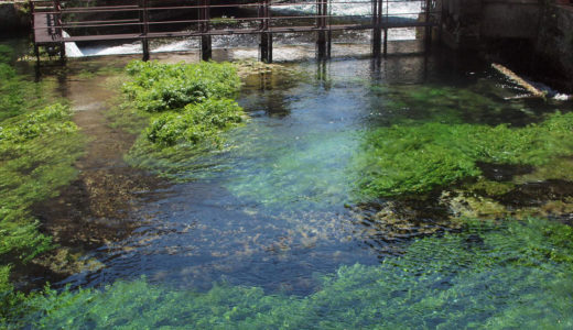 南仏の観光のおすすめ!不思議な泉フォンテーヌ・ド・ボークリューズ