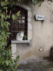 サン・ポール・ド・ヴァンスの村を散策