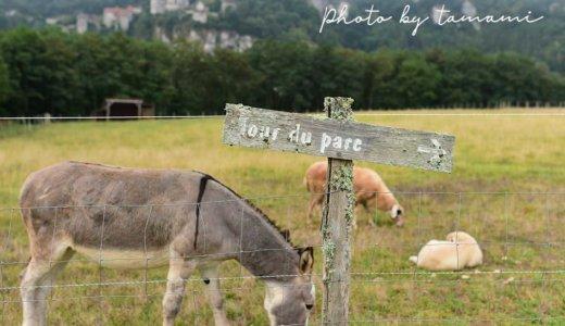 サン・シル・ラポピーのおすすめホテル【Hotel – Spa Le Saint Cirq】は村を一望できる!