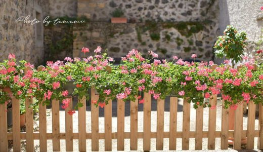 サン・サテュルナン(Saint-Saturinin)【オーヴェルニュ地方の美しい村巡り】