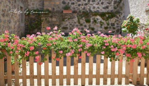 TBS『世界遺産で紹介された村』サン・サテュルナン(Saint-Saturinin)【オーヴェルニュ地方の美しい村巡り】&蚤の市