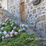 オーヴェルニュ地方の美しい村サレール