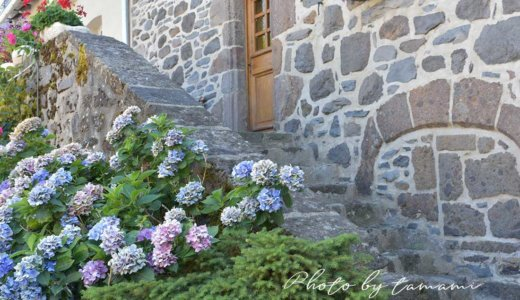 サレール(Salers)【オーヴェルニュ地方の美しい村巡り】