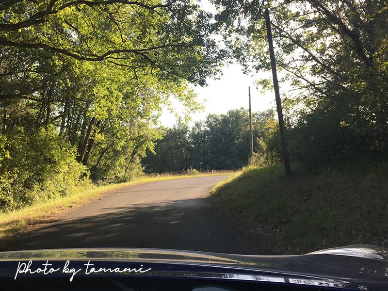 フランス南西部の田舎道