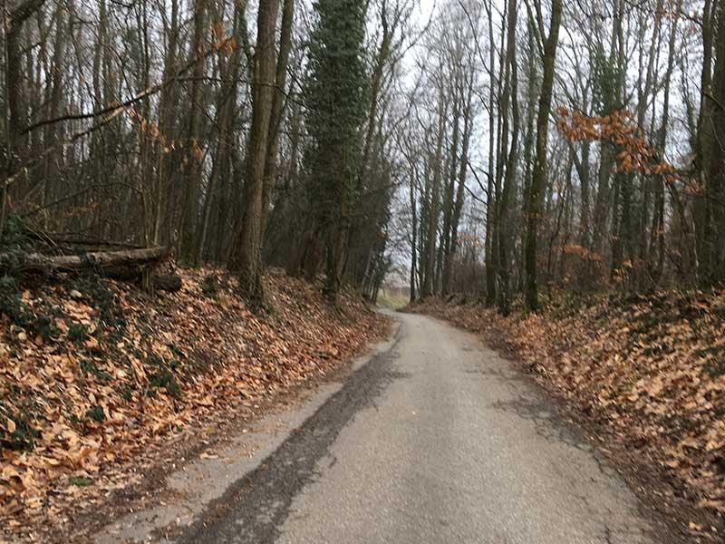 リクヴィルからユナヴィルへ行く山道