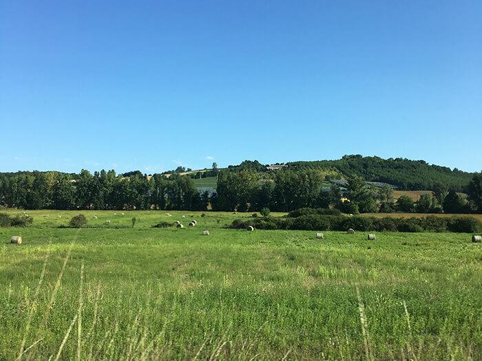 アキテーヌ地方の風景
