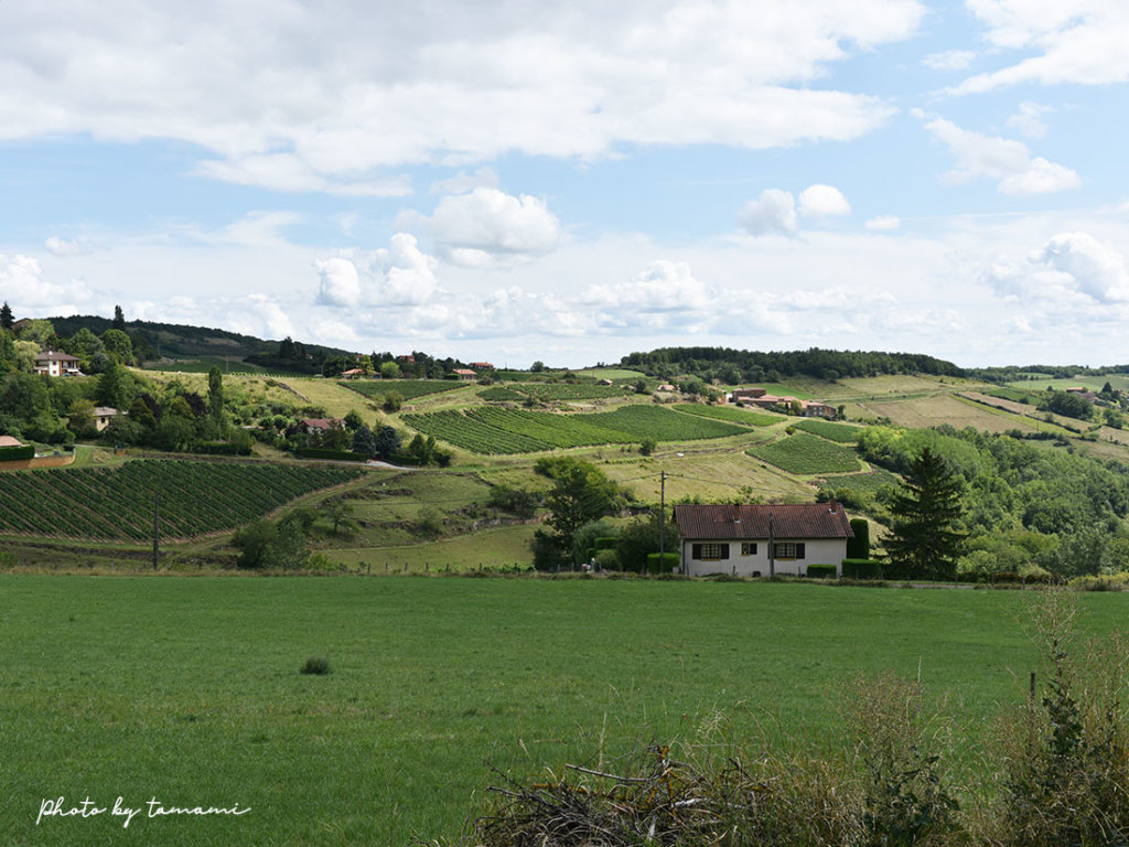 フランスの美しい村Oignt