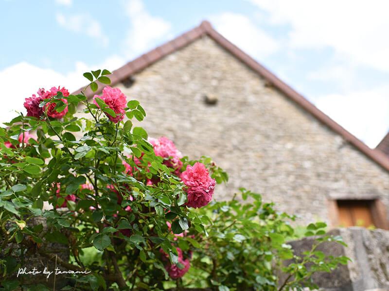 ブルゴーニュ=フランシュ=コンテブルゴーニュ=フランシュ=コンテ地方の美しい村シャトーヌフ