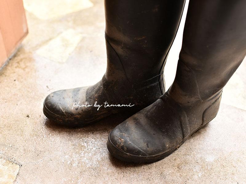 使いやすいオススメのガーデニングブーツ(長靴)はHUNTERとAIGLE