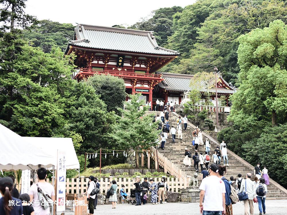 鎌倉散策で定番の鶴岡八幡宮
